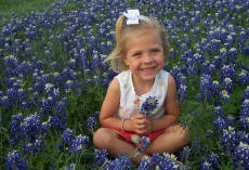 Lewisville Child Support Attorney